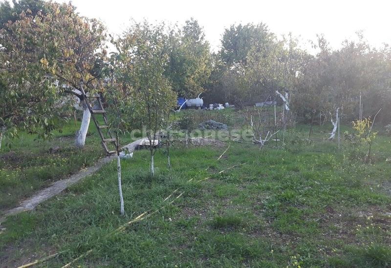 Продам участок по адресу Россия, Севастополь, Садоводческое товарищество Медик-1, СНТ Медик фото 15 по выгодной цене