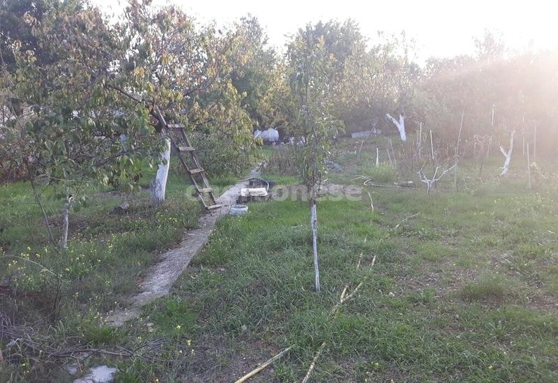 Продам участок по адресу Россия, Севастополь, Садоводческое товарищество Медик-1, СНТ Медик фото 13 по выгодной цене